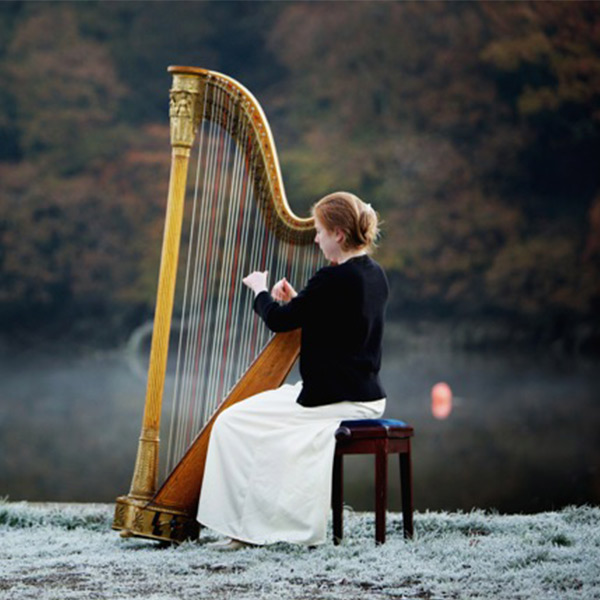 Wedding Harpist for Hire