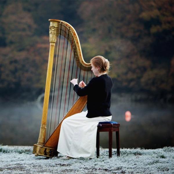 Wedding Harpist for Hire